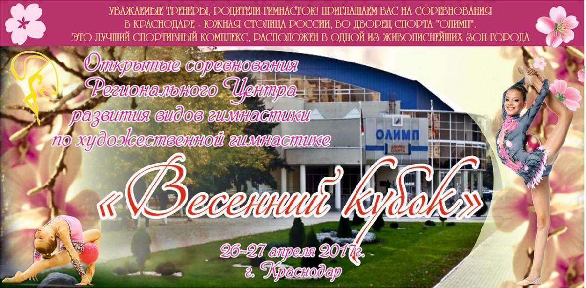 «Весенний кубок», 26-27.04.2017, Краснодар
